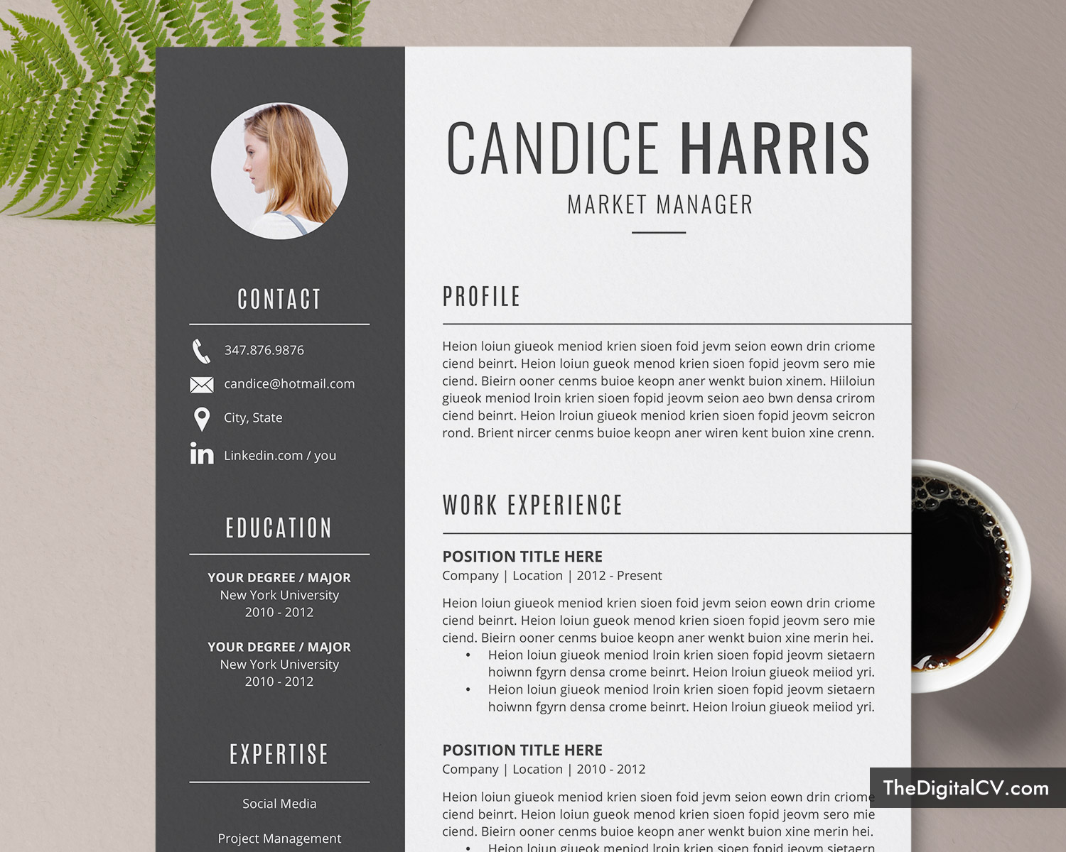 professional resume template for ms word clean cv design cover letter modern format Resume Professional And Creative Resume Templates