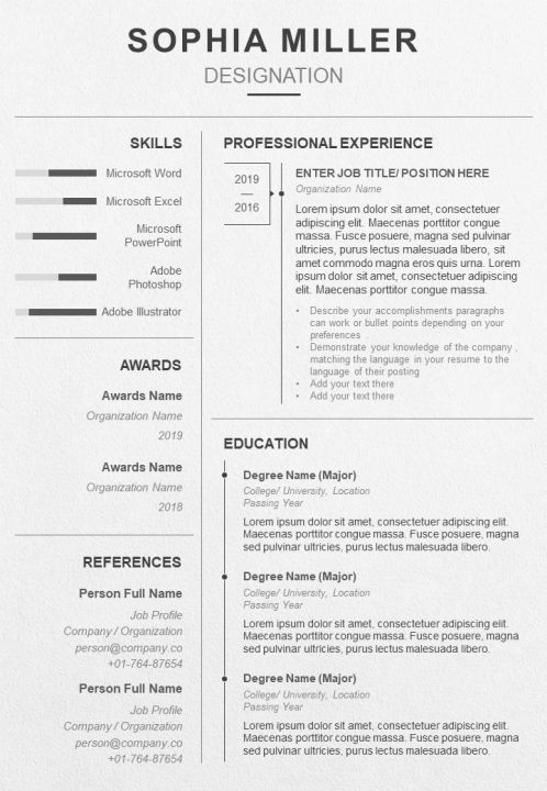 professional resume template with career summary powerpoint presentation templates themes Resume Bullet Point Resume Template
