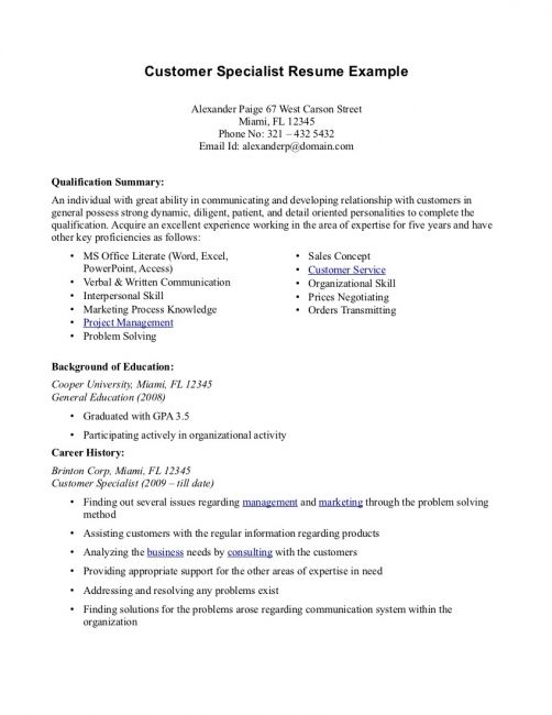 professional summary resume examples template free for customer service construction Resume Resume Summary Examples For Customer Service