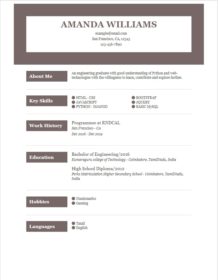 programmer resume examples for devel summary entry level security guard objective Resume Programmer Resume Summary