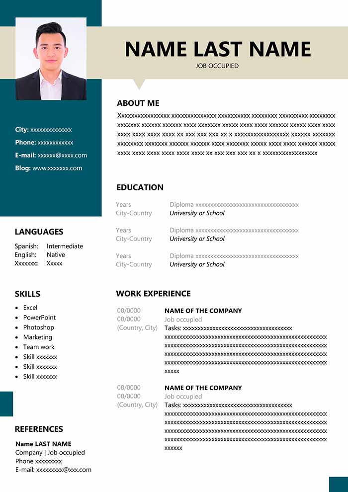 resume format for fresher in ms word free layout of freshers curriculum vitae Resume Layout Of Resume For Freshers