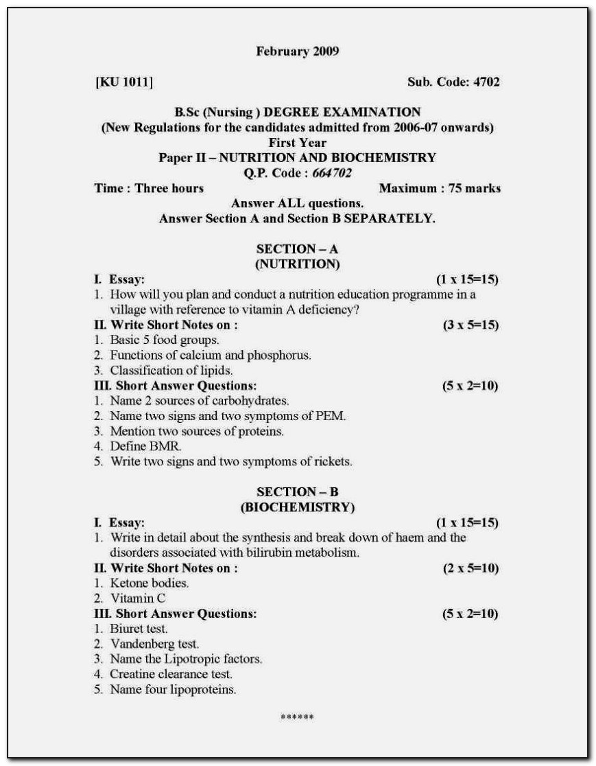 resume format for sc nursing vincegray2014 bsc students freshers pdf good summary Resume Resume Format For Bsc Students