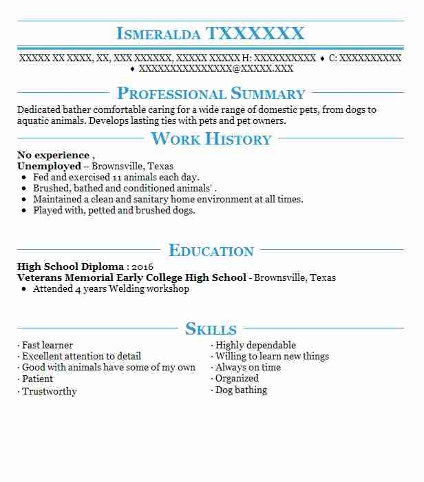 resume no experience skills summary for with work from home personal care assistant Resume Summary For A Resume With No Experience