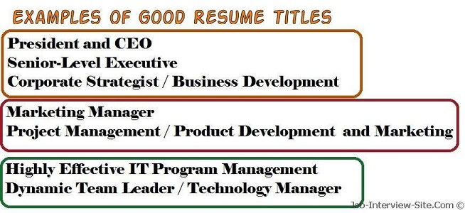 resume title examples of titles for experienced good wordpress catchy objective hair Resume Resume Title For Experienced