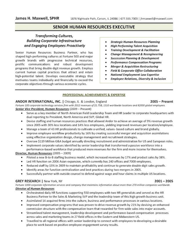the top executive resume examples written by professional recruiter template senior level Resume Senior Level Resume Sample