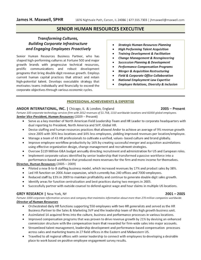 top executive resume writing examples senior level for director position human resources Resume Resume For Director Position