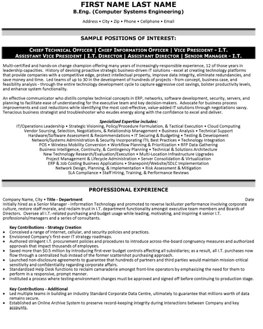 top information technology resume templates samples template it cto cio vp director Resume Information Technology Resume Template