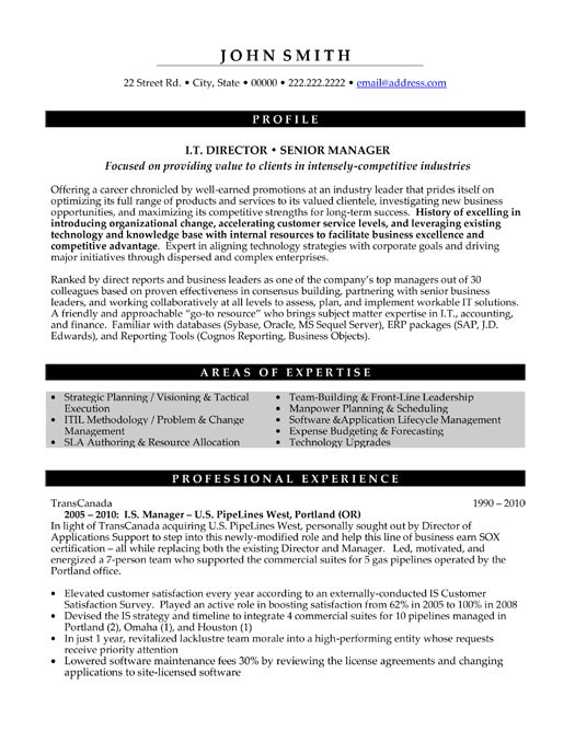 top information technology resume templates samples template it executive director senior Resume Information Technology Resume Template