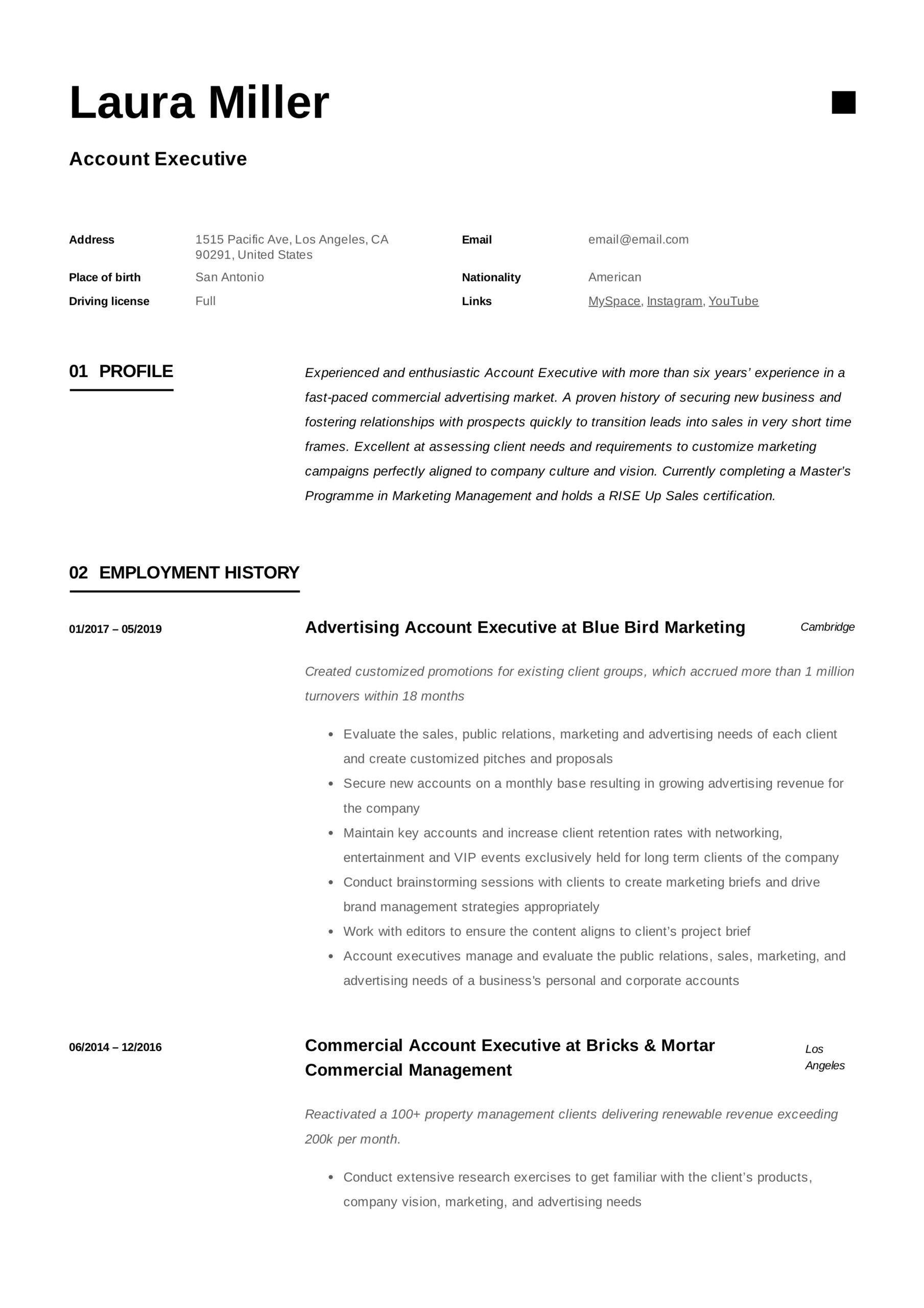 account executive resume writing guide templates pdf examples example payroll vipkid Resume Account Executive Resume Examples