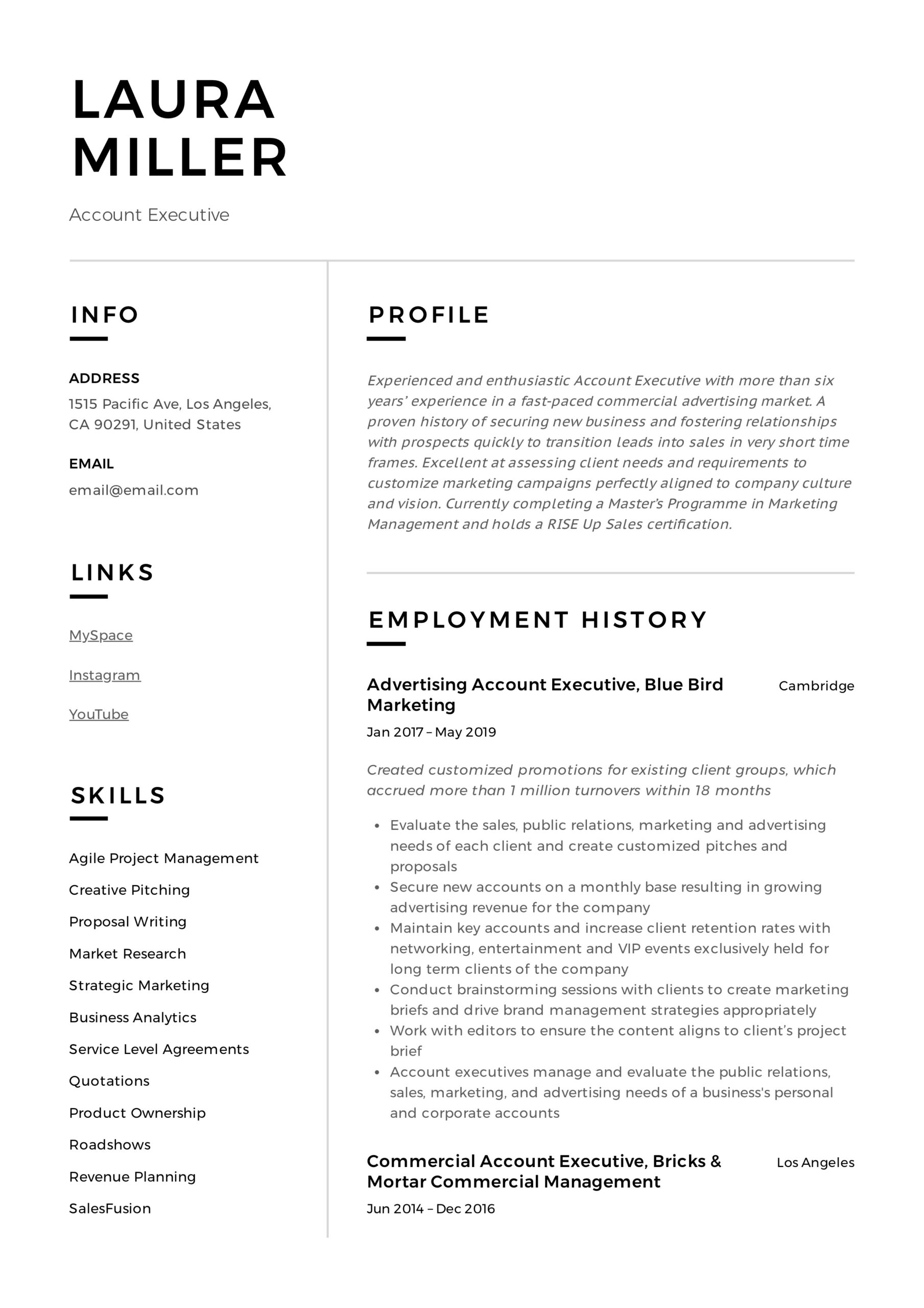 account executive resume writing guide templates pdf examples example software engineer Resume Account Executive Resume Examples
