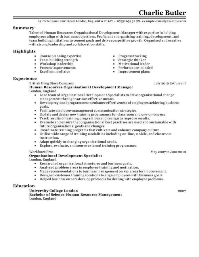 amazing human resources resume examples livecareer levels of experience for Resume Levels Of Experience For Resume