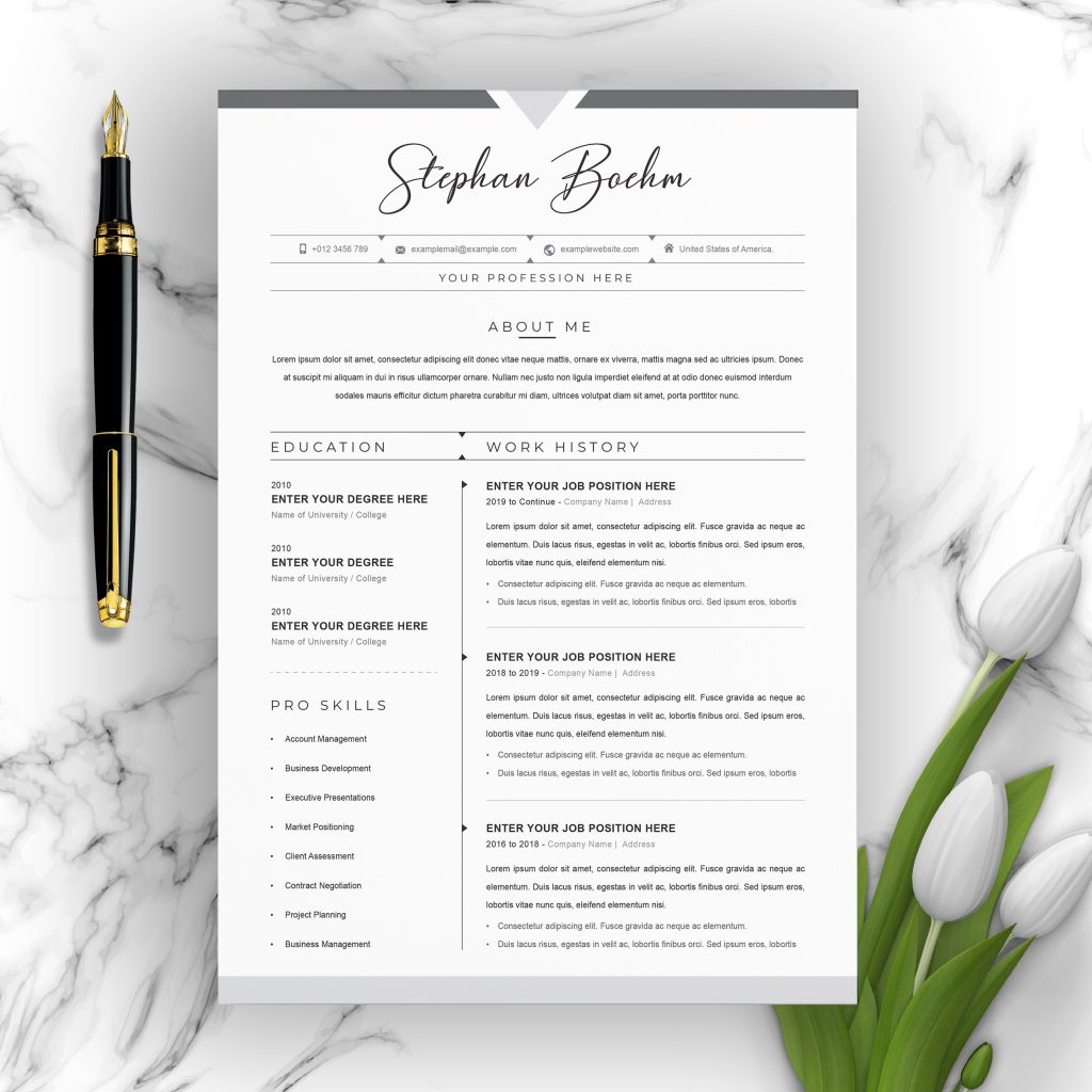 best contemporary new styles resume cv for modern template clean professional creative Resume Contemporary Modern Resume Template