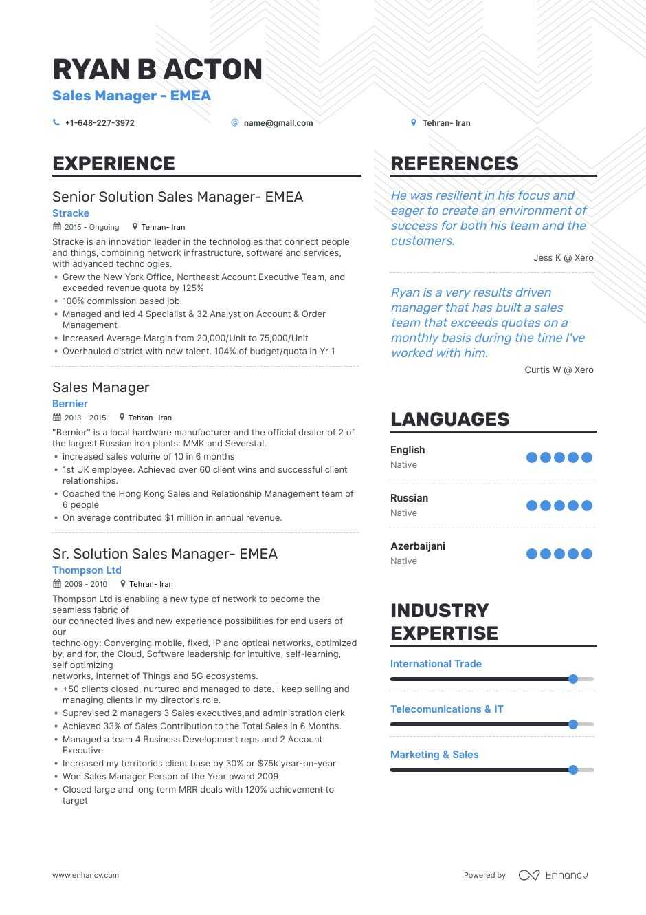best manager resume examples with objectives skills templates template project control Resume Sales Manager Resume Template