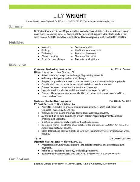 best professional resume writing services va us all industries examples design Resume Best Professional Resume Examples