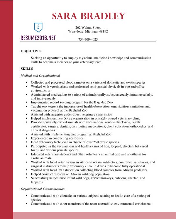 best veterinary assistant resume templates in technician sample template immigration Resume Veterinary Technician Resume Sample