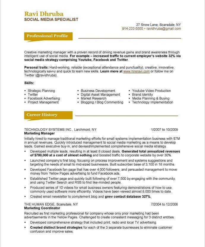 blue sky resumes resume service marketing makeover media specialist personal basic simple Resume Personal Marketing Resume