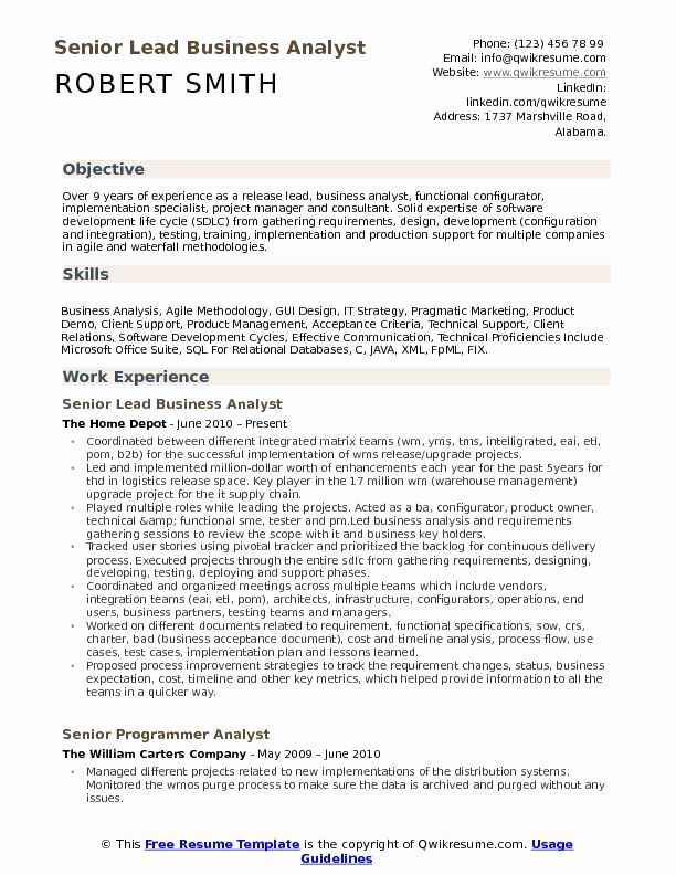 business analyst resume with no experience new lead samples programmer sample talent Resume Programmer Analyst Resume Sample