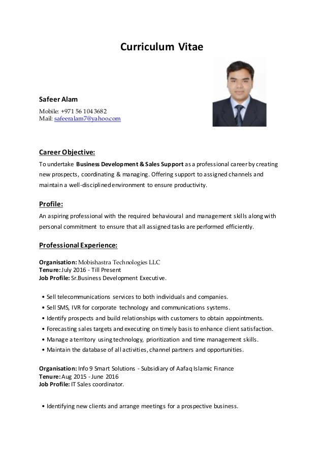 business development executive resume cv design manager sample hair stylist example free Resume Business Development Executive Resume