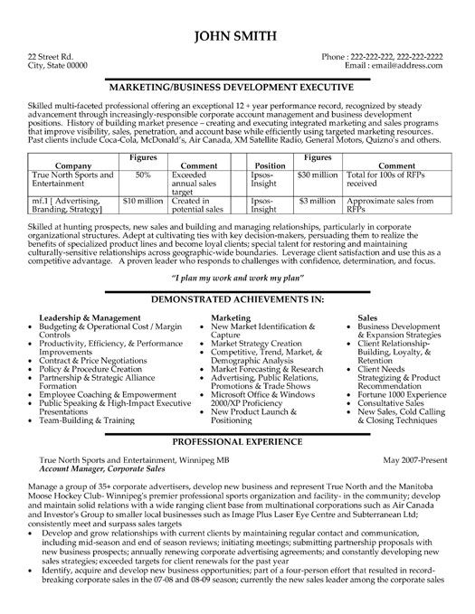 click here to this business development executive resume template http res professional Resume Business Development Executive Resume