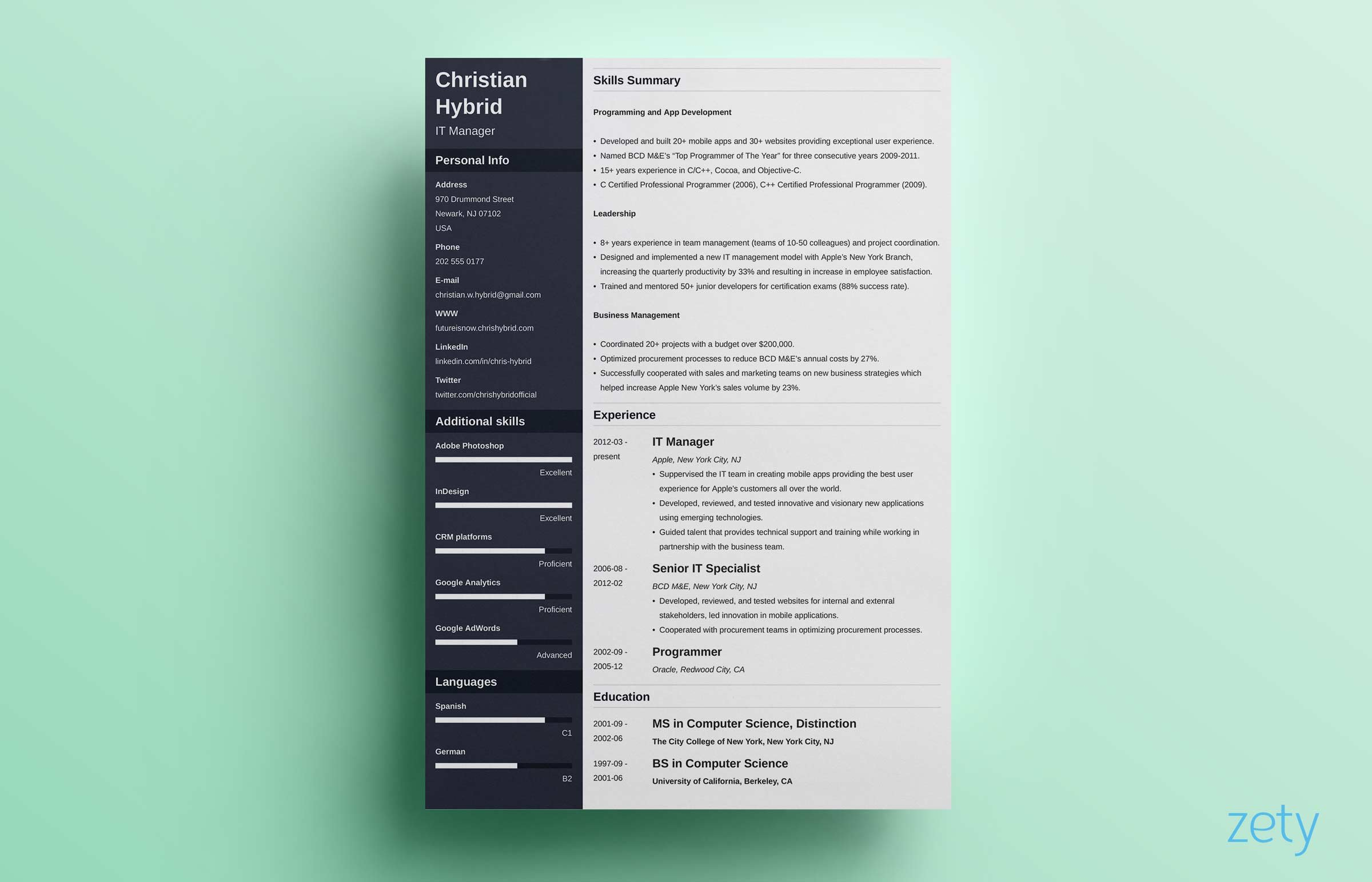 combination resume template combo examples functional format freelance photography sample Resume Combination Functional Resume