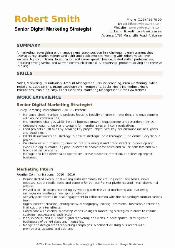 digital marketing resume example unique strategist samples examples format in word Resume Digital Marketing Resume Summary