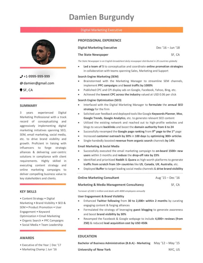 digital marketing resume guide with samples and examples profile good self description Resume Digital Marketing Profile Resume