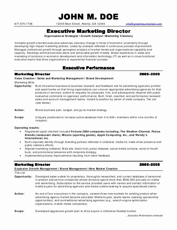 director of marketing resume unique sample resumes job examples professional samples Resume Marketing Resume Examples 2020