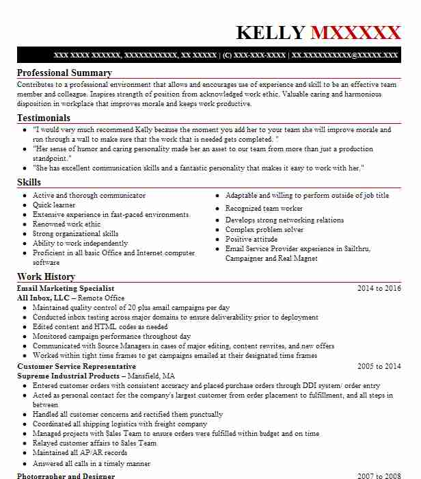 email marketing specialist resume example livecareer sample acknowledgement bash stopped Resume Email Marketing Resume Sample