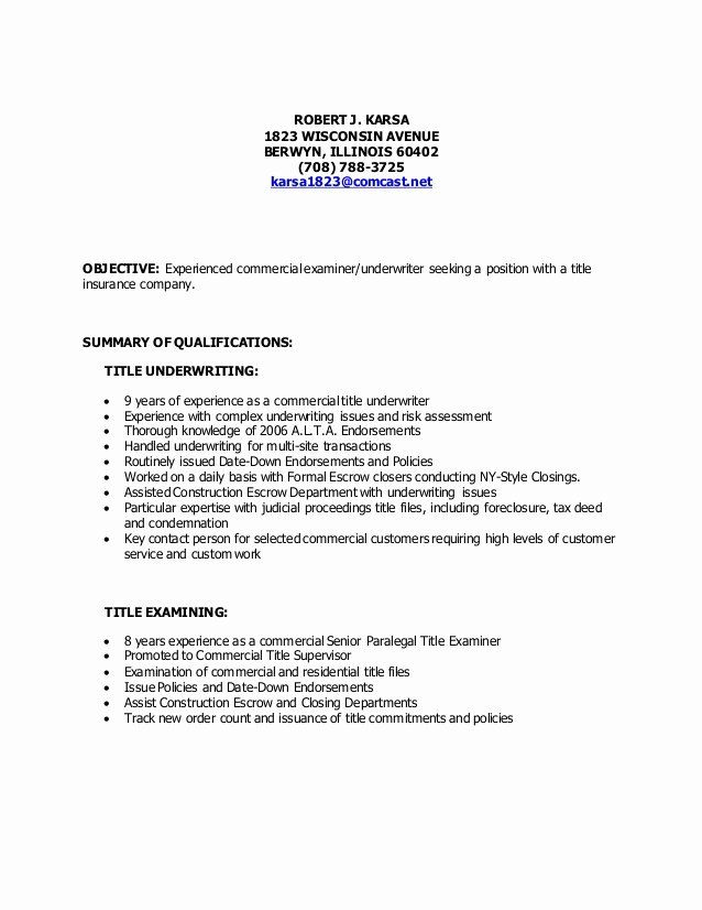 examples of resume titles fresh title template job for experienced travel agent political Resume Title For Resume For Experienced