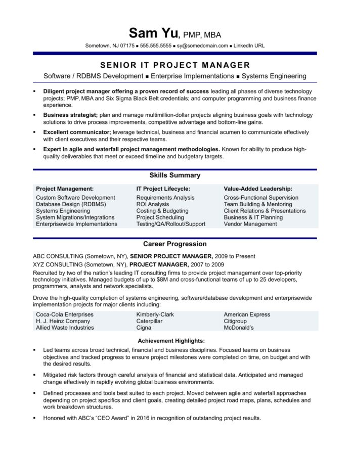 experienced it project manager resume sample monster summary professional creative Resume Project Manager Resume Summary