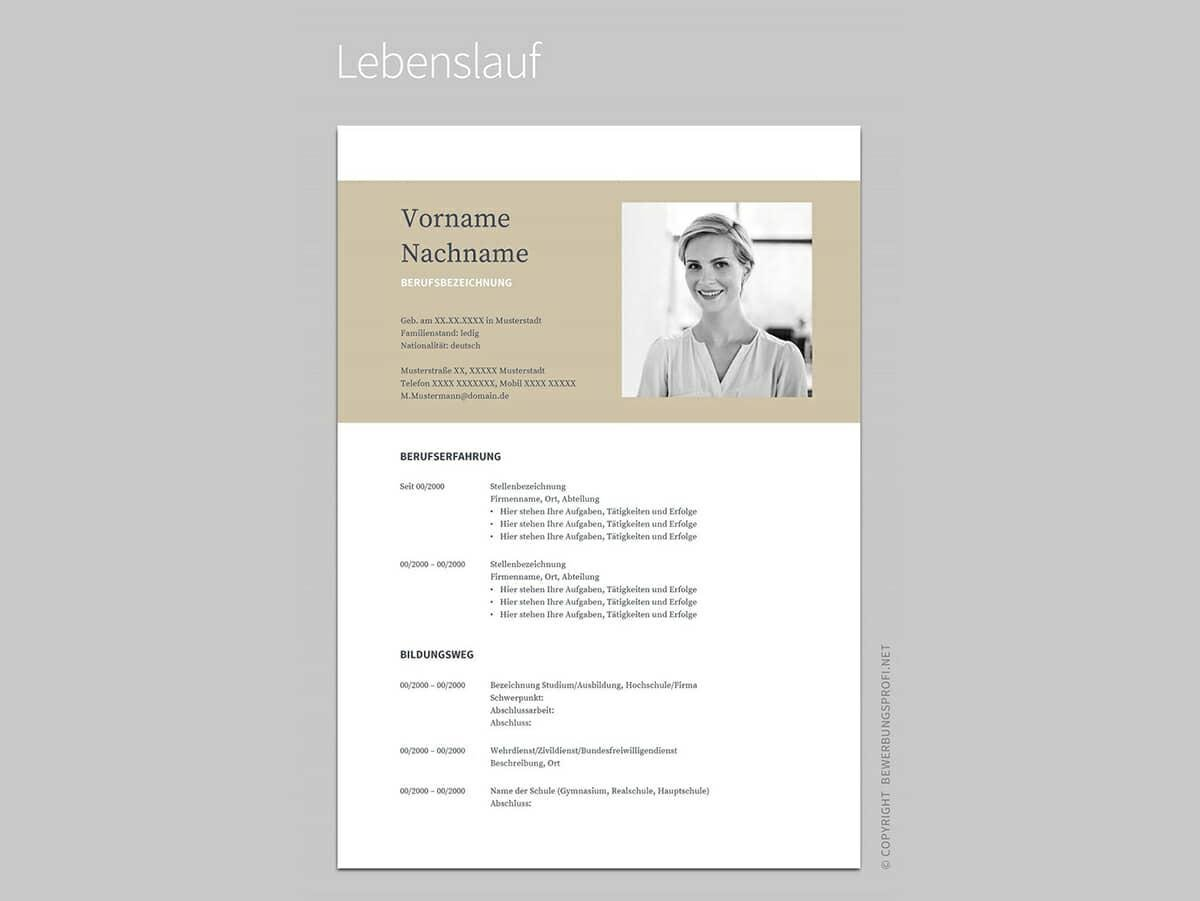 free google docs resume templates drive alternatives beautiful template dominos delivery Resume Beautiful Google Doc Resume Template Free