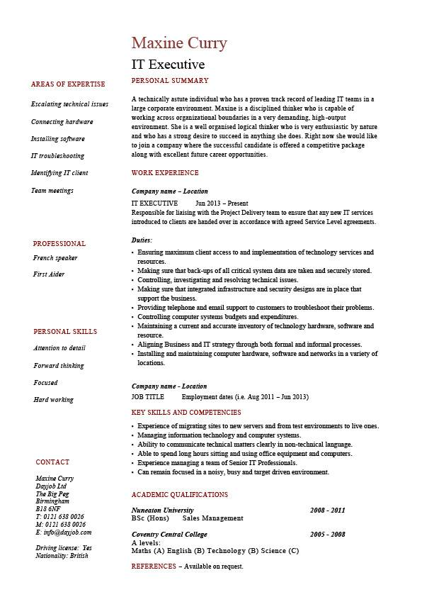 it executive resume example sample technology technical skills expertise college for pic Resume Technical Skills For Resume