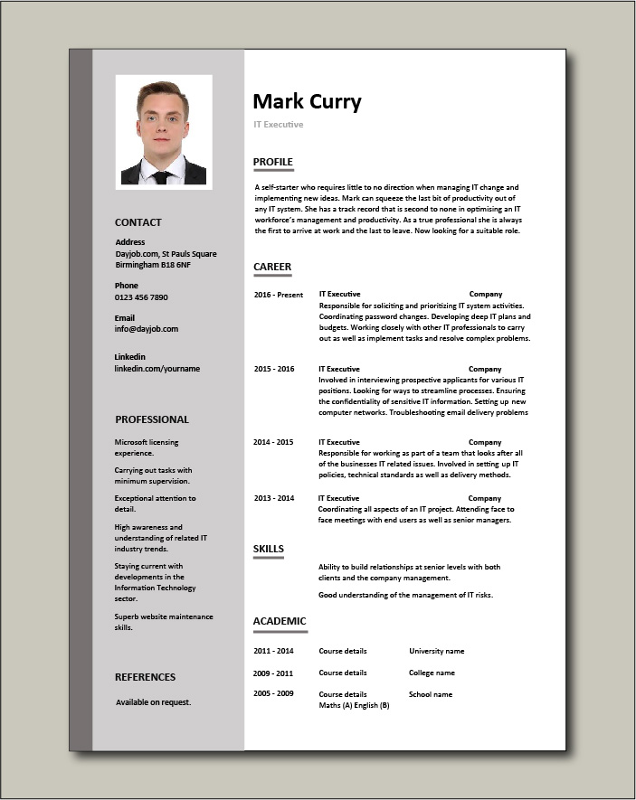 it executive resume example sample technology technical skills expertise college format Resume Executive Resume Format