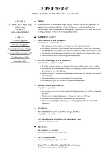 job winning resume templates free io best professional examples functional design Resume Best Professional Resume Examples