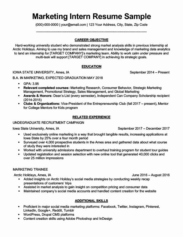 marketing resume objective examples new intern sample writing tips in internship targeted Resume Resume Objective Statement For Internship