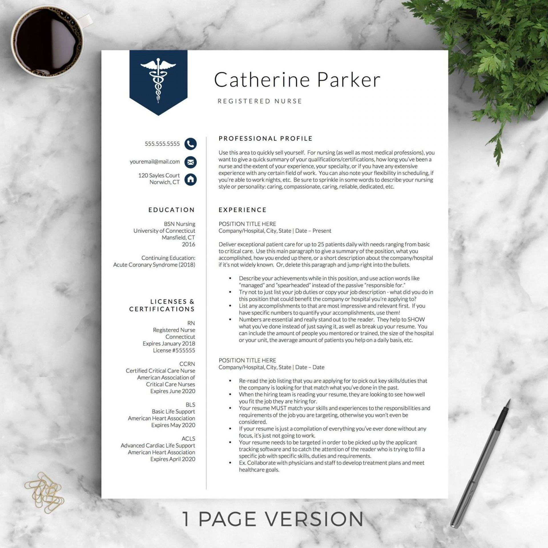 nurse resume template word addictionary nursing format breathtaking best business Resume Nursing Resume Format Download