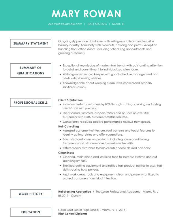perfect resume examples for my best professional simple functional entry level hair Resume Best Professional Resume Examples