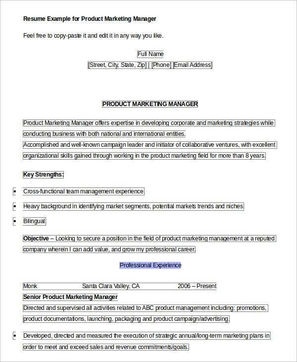 product manager resume templates pdf free premium template marketing apple specialist Resume Product Manager Resume Template