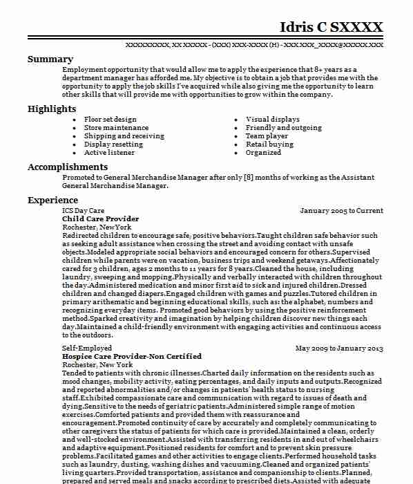professional child care provider resume examples childcare livecareer sample for business Resume Example Of A Child Care Resume
