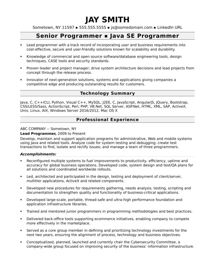 programmer resume template monster computer software programs for experienced laura Resume Computer Software Programs For Resume