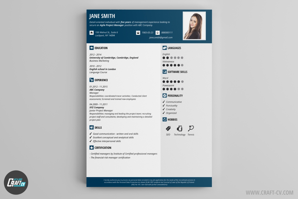 resume builder templates craftcv for experienced professionals template h1b visa Resume Resume Builder For Experienced Professionals
