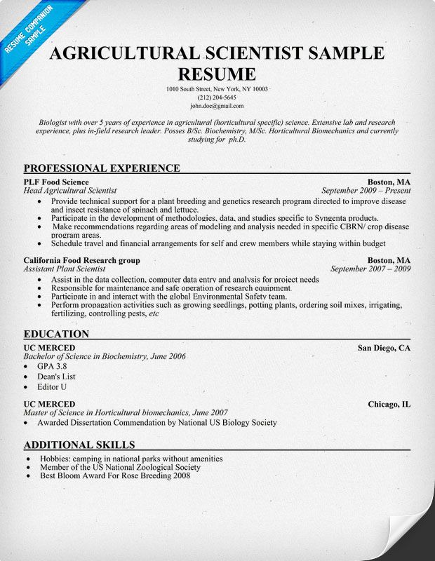 resume samples and to write companion engineering templates civil engineer sample for Resume Resume Sample For Agricultural Engineering