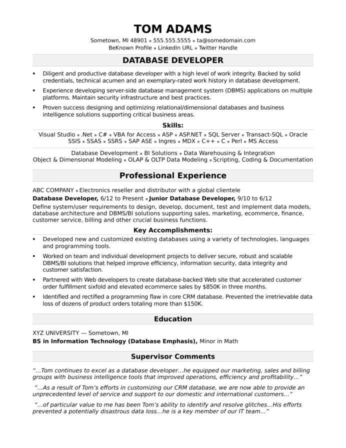 sample resume for midlevel it developer monster excel vba elegant import export executive Resume Database Developer Resume Sample