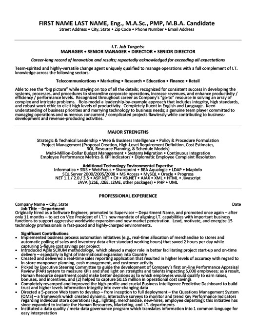 senior manager resume template premium samples example oracle access hha skills leather Resume Oracle Access Manager Resume