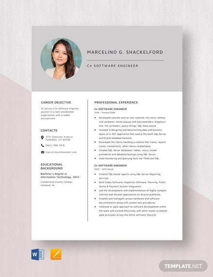 software engineer resume template free word pdf documents premium templates developer Resume Software Developer Resume Template