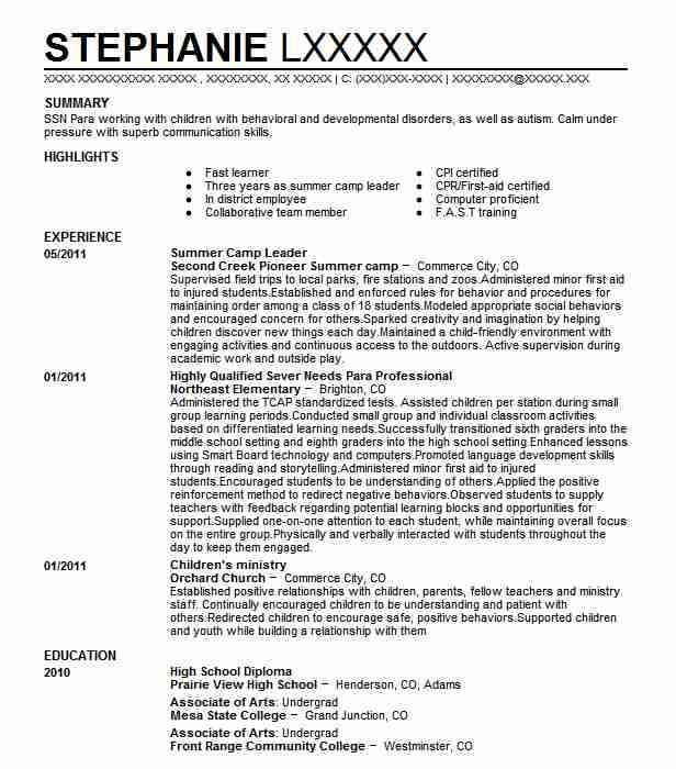summer leader resume example resumes livecareer counselor job description for procurement Resume Resume For Summer Camp Job