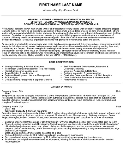 vice president it resume sample template executive examples vp business information Resume Executive Vice President Resume Examples