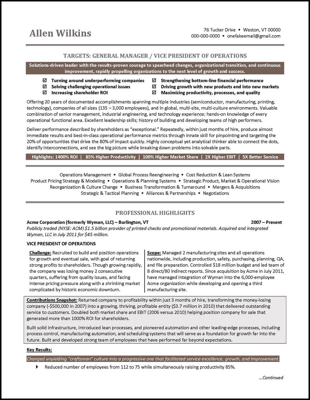 vice president resume example distinctive career services executive examples securitas Resume Executive Vice President Resume Examples
