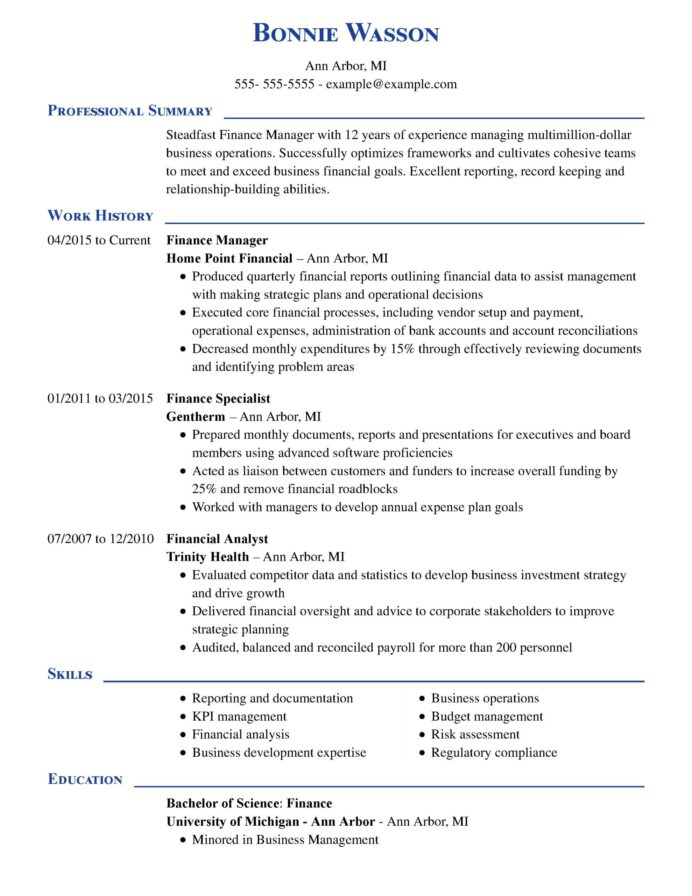 amazing finance resume examples livecareer professional manager executive chrono scaled Resume Finance Professional Resume