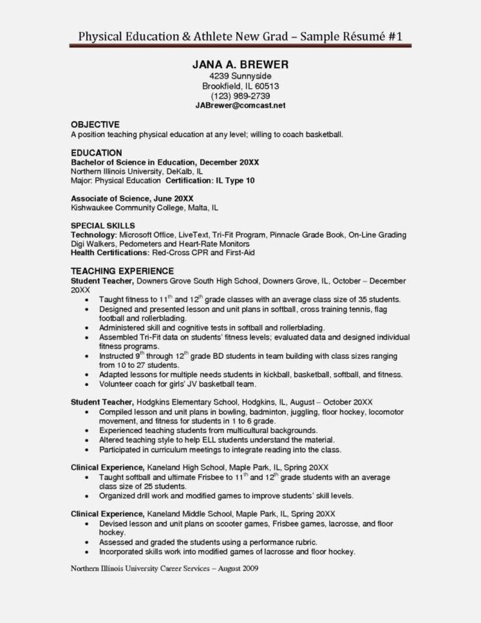 basketball player resume professional templates format site examples chief development Resume Professional Basketball Player Resume Examples